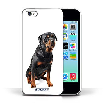 STUFF4 Phone Case / Cover for Apple iPhone 5C / Swiss Mountain Design / Dog Breeds Collection