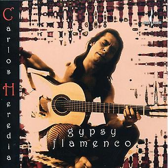 Carlos Heredia - Gypsy Flamenco [CD] USA import
