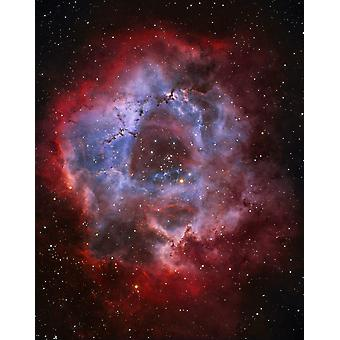 NGC 2237 the Rosette Nebula Poster Print by Lorand FenyesStocktrek Images