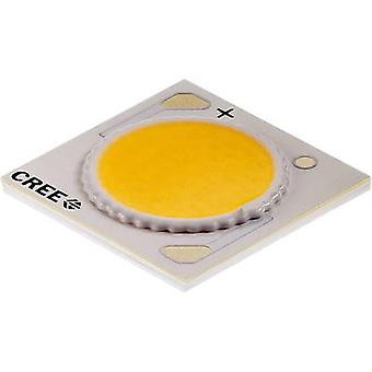 HighPower LED Cold white 38 W 2180 lm 115 °