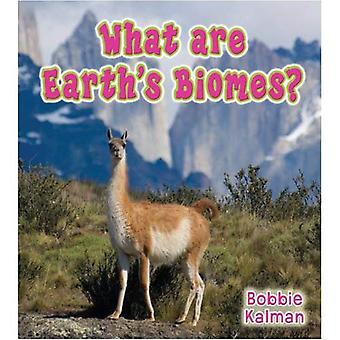 What are Earth's Biomes? (Big Science Ideas)