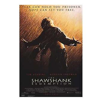 The Shawshank Redemption Movie Poster (11 x 17)