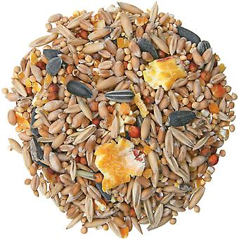 Cj Garden Bird Seed Mix 3ltr