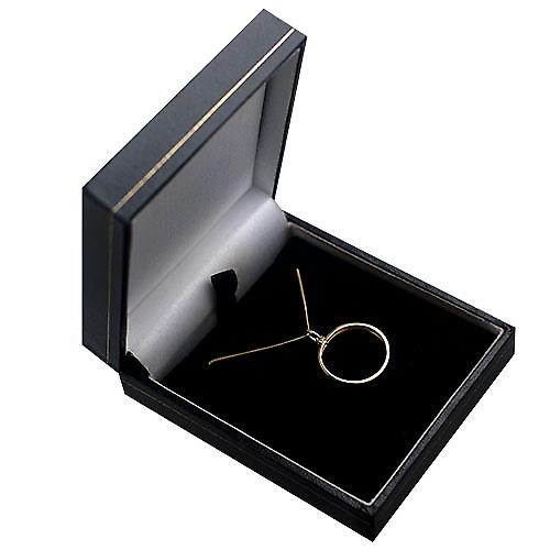 9ct Gold 20mm plain Half Sovereign mount channel Pendant with a curb Chain 16 inches Only Suitable for Children