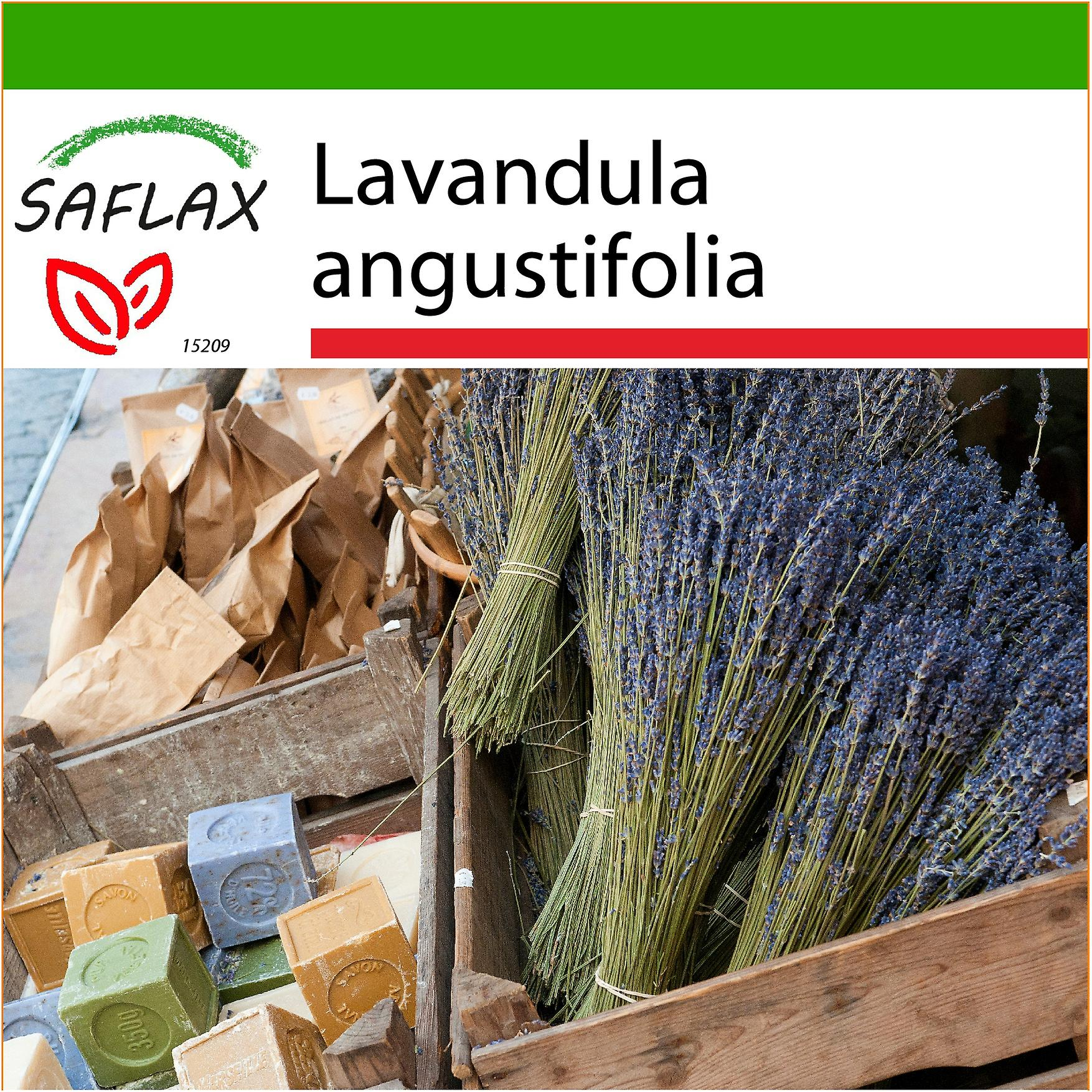 Saflax 150 seeds with soil english lavender for Uses of soil in english