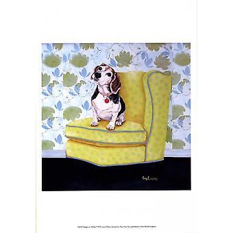 Beagle on Yellow Poster Print by Carol Dillon (13 x 19)