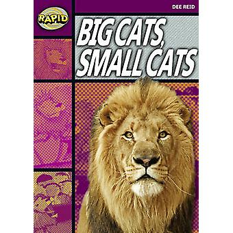 Rapid Stage 1 Set A - Big Cats Small Cats (Series 1) by Dee Reid - 978