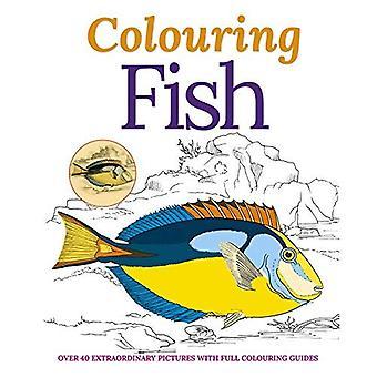 Colouring Fish