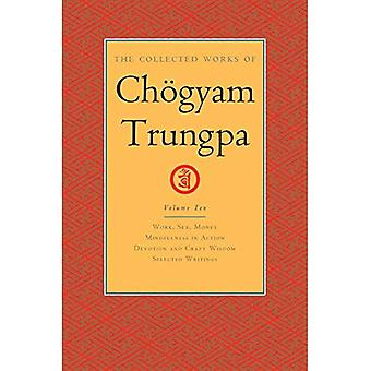 The Collected Works of Chogyam Trungpa, Volume 10:� Work, Sex, Money - Mindfulness in Action - Devotion and Crazy Wisdom - Selected Writings