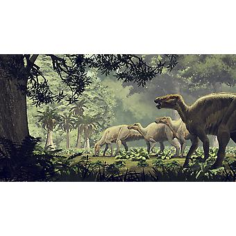 Edmontosaurus annectens a saurolophine hadrosaur from the Maastrichtian of North America Poster Print