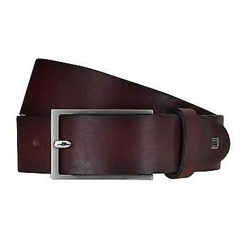SAKLANI & FRIESE belts men's belts leather belt Bordeaux 5120