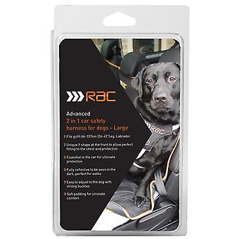 Rac Advanced Harness Large 60-80cm