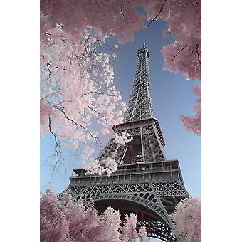 Eiffelturm-Infrarot - Paris Poster Plakat-Druck