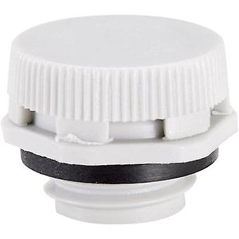 Pressure compensation piece M12 Polyamide Light grey (RAL 7035) LappKabel SKINDICHT VENT UL 12x1,5 LGY plus 1 pc(s)