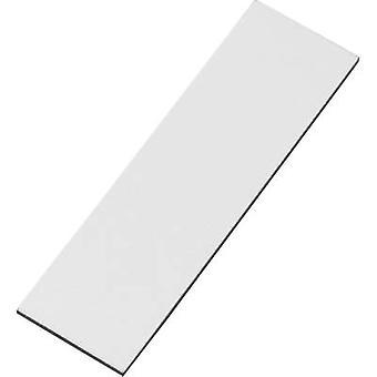 Magnetic pad White (L x W) 66 mm x 20 mm Conrad Components