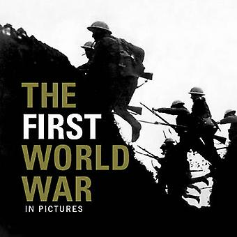 The First World War by Ammonite Press - 9781907708886 Book