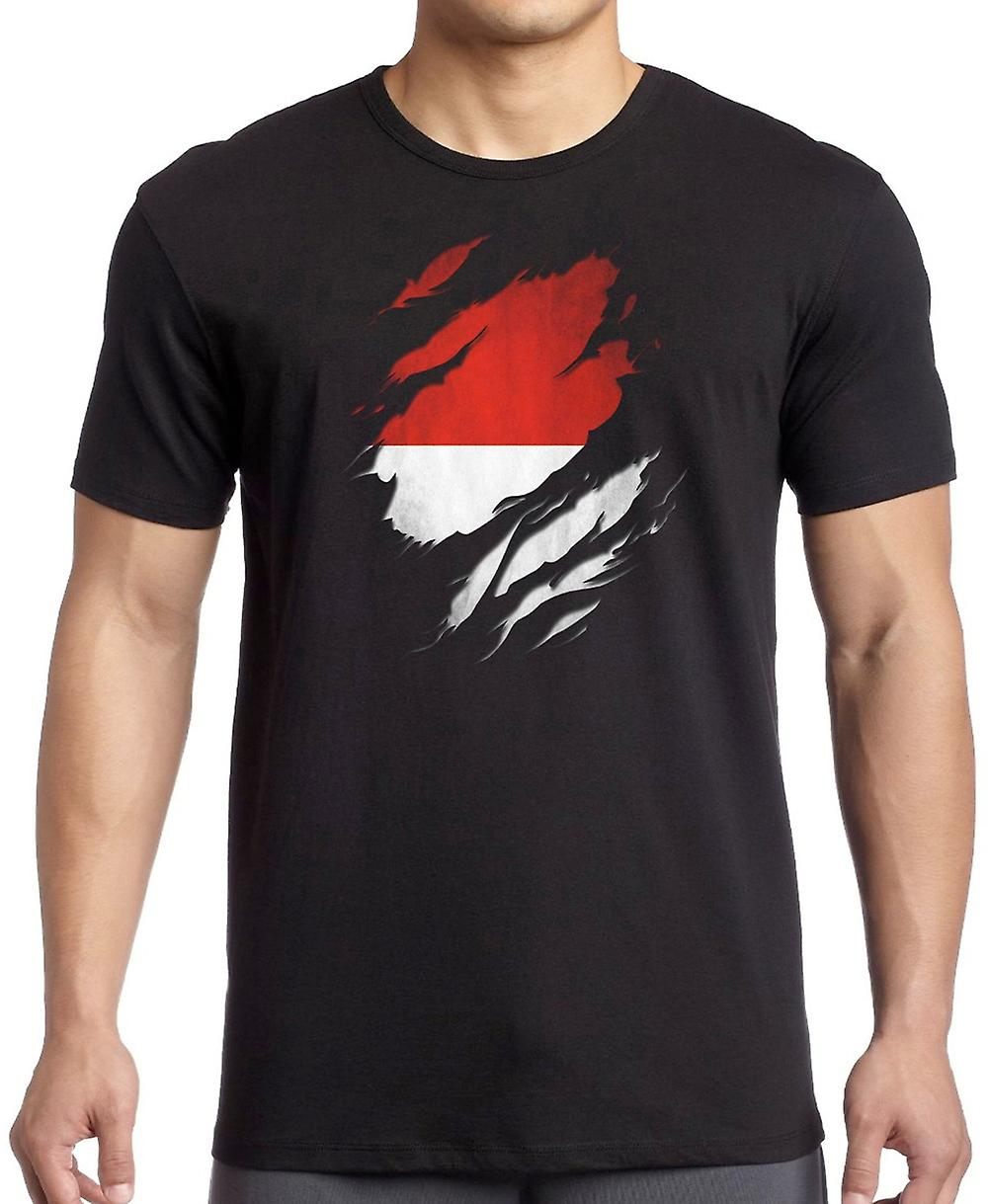 Indonesian Grunge Flag Ripped Effect T Shirt