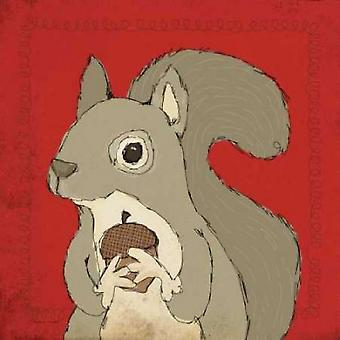 Squirrel Poster Print by Stephanie Marrott