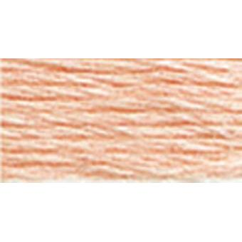 DMC 6-Strand Embroidery Cotton 8.7yd-Very Light Apricot-Lighter than 3824
