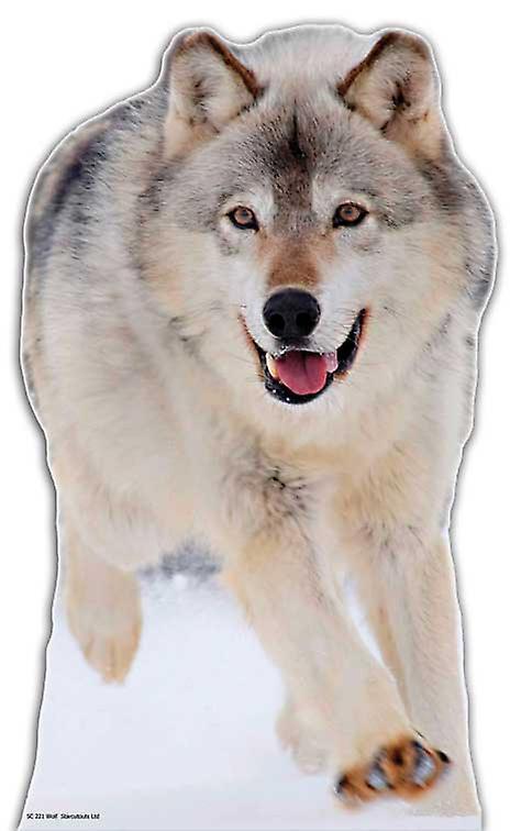Wolf - Lifesize kartong släppandet / stående