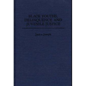 Black Youths Delinquency and Juvenile Justice by Joseph & Janice