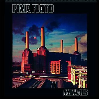 Pink Floyd Fridge Magnet Animals new Official 76mm x 76mm