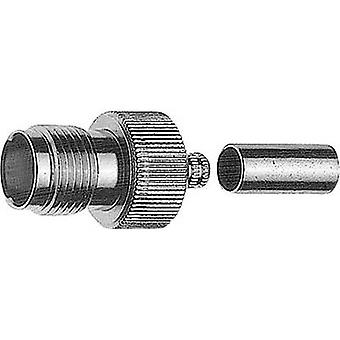 TNC connector Socket, straight 50 Ω Telegärtner J01011A0044 1 pc(s)