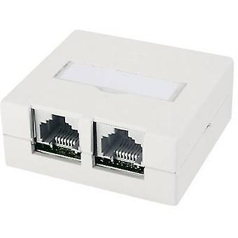 Telegärtner Network outlet Surface-mount CAT 6 Pure white