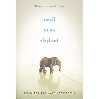 Pequeno como um elefante