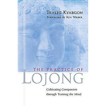 De praktijk van Lojong: het cultiveren van mededogen door middel van Training van de geest