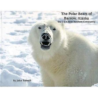 De ijsberen Barrow, Alaska: de VS de meest noordelijke Gemeenschap