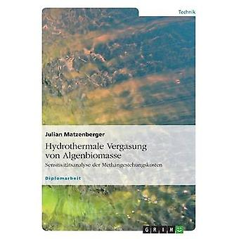 Hydrothermale Vergasung von Algenbiomasse by Matzenberger & Julian