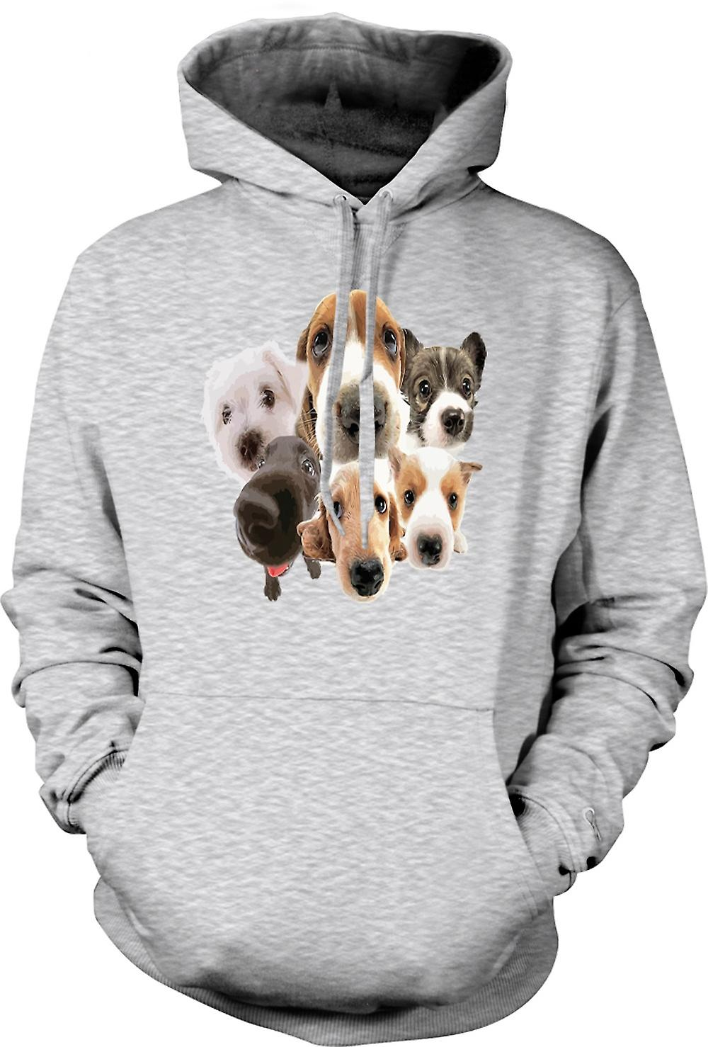 Mens Hoodie - Pet Dog Faces Collage - Cute