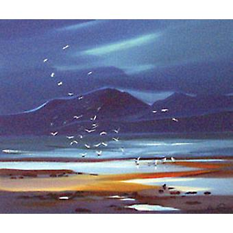 Pam Carter print - Flock of Gulls, before Arran