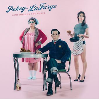 Something In The Water von Pokey Lafarge