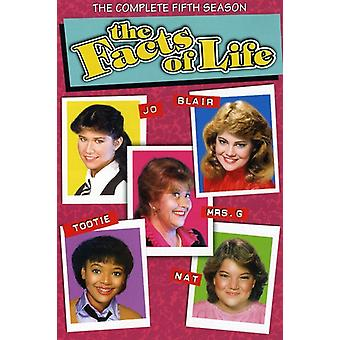 Tatsachen des Lebens - Facts Of Life: Season 5 [DVD] USA Import