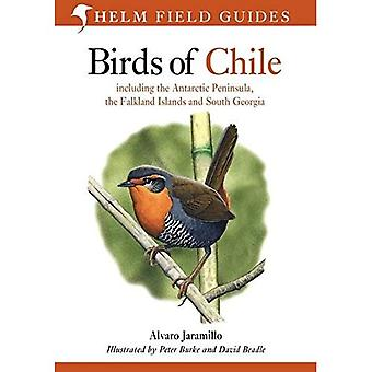 Birds of Chile: Including the Antartic Peninsular, the Falkland Islands and South Georgia (Helm Field Guides) [Illustrated]