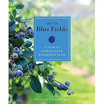 Out in Blue Fields: A Year at Hokum Rock Blueberry Farm