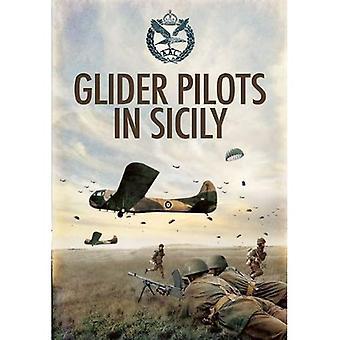 Piloti di alianti in Sicilia