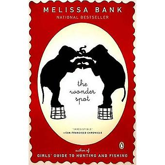 The Wonder Spot by Melissa Bank - 9780143037217 Book