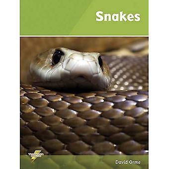 Snakes (Thunderbolts)