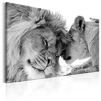 Canvas Print-lejon kärlek