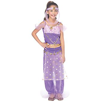 Magic Genie Princess Jasmine Arabian Aladdin Storybook Toddler Girls Costume