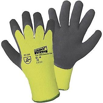 L + D Griffy gletsjer grip 14932 PAA beschermende handschoen maat (handschoenen): 8, M EN 388, EN 511 CAT II 1 paar