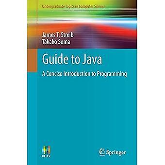 Guide till Java: en kortfattad introduktion till programmering (grundutbildning ämnen i datavetenskap)