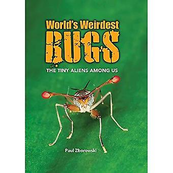 werelds meest Weirdest Bugs: de kleine Aliens onder ons