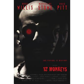 12 Monkeys Movie Poster (11 x 17)