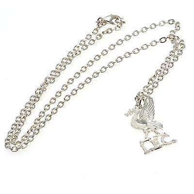 Liverpool Silver Plated Pendant & Chain LB