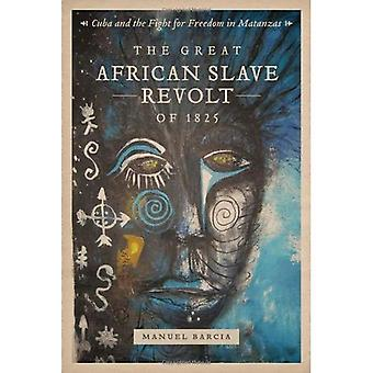 The Great African Slave Revolt of 1825: Cuba and the Fight for Freedom in Matanzas