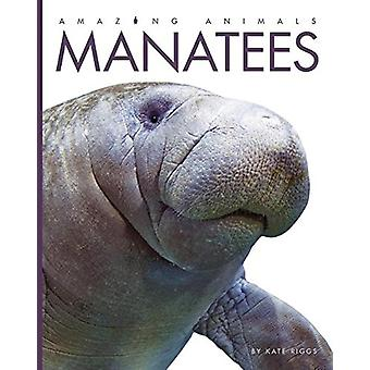 Manatees by Kate Riggs - 9781608188796 Book